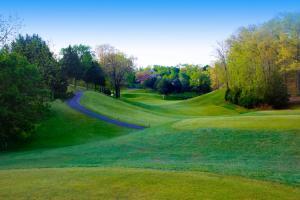Branson MO LedgeStone Golf Course Resort