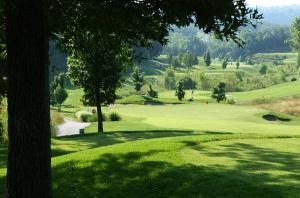 Branson Mo Golf Course Resort Thousand Hills Par Three